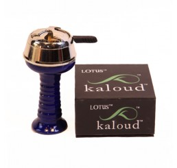 Kaloud Head Managment