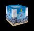 Blueberry 1 KG